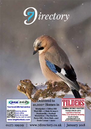The 7 Directory Magazine Cover